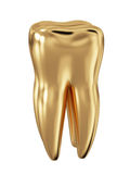 Golden tooth isolated Royalty Free Stock Photos