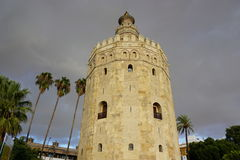 golden tower obraz stock