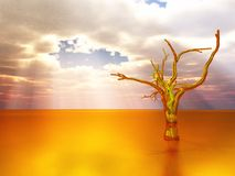 Golden tree Royalty Free Stock Photo