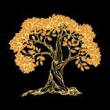 Golden tree on black Stock Image