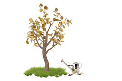 Golden tree with watering pot.3D illustration. Royalty Free Stock Images