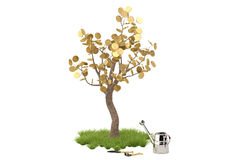Golden tree with watering pot.3D illustration. Stock Photos