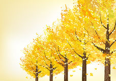 Golden trees in late autumn Royalty Free Stock Photo
