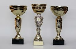 Golden trophies. Three different kind of golden trophies. Isolated on white background royalty free stock images