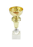Golden trophy Stock Images