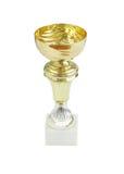 Golden trophy Stock Images
