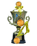 Golden trophy cup with medal and ribbon isolated Stock Images
