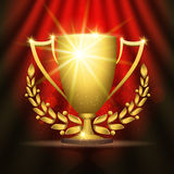Golden trophy cup Royalty Free Stock Images