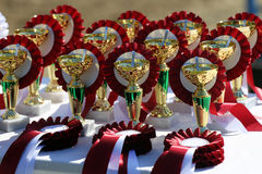 Golden trophy cups and ribbons for riders Stock Image