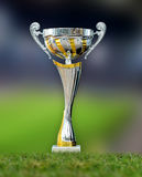 Golden trophy in grass Royalty Free Stock Images