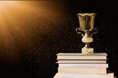 Golden Trophy On Pile Of Books, Against Blackboard, With Sun Ray Stock Photography