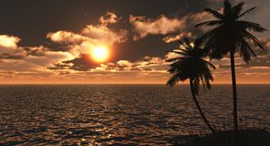 Golden tropical sunset. 3d render of a tropical golden sunset Royalty Free Stock Photography