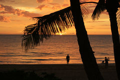 Golden Tropical Sunset. Beautiful Golden Sunset On The Beach Royalty Free Stock Images