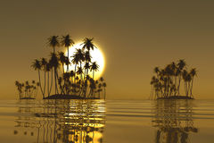 Golden tropical sunset Royalty Free Stock Images