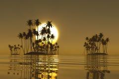 Golden tropical sunset. Golden sunset over tropical coconut islands vector illustration