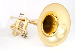 Golden trumpet Royalty Free Stock Images