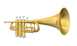 Golden Trumpet Isolated Stock Image