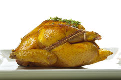 Golden turkey. Roasted golden turkey seasoned with spices and herbs and stuffings