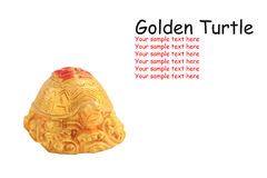 Golden turtle isolated on white. Golden turtle, symbol of Chinese fortune, isolated on white Stock Photography