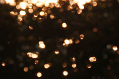 Golden twinkle. Stock Images