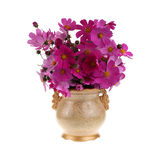 Golden vase with flowers Royalty Free Stock Images