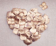 Golden vintage hydrangea flower petals in the shape of a heart Stock Images