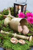 Golden Vintage Pounder Holiday Decoration on Moss Stock Photos