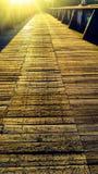 Golden walkway Royalty Free Stock Image