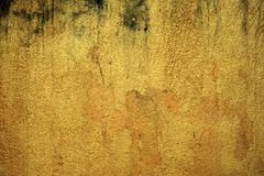 Golden wall background in temple Stock Photos