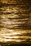 Golden water. Sunlight reflecting on water at sunset Stock Images