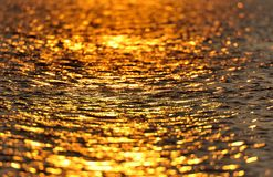 Golden water Stock Photos
