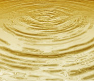 Golden water Stock Photography