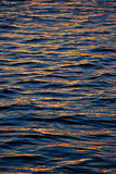Golden water. Background of the golden water Royalty Free Stock Photos