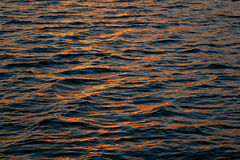 Golden water. Background of the golden water Royalty Free Stock Images
