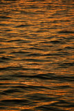 Golden water. Background of the golden water Royalty Free Stock Photography