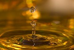 Golden water drops royalty free stock photo