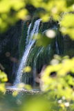 Golden Water Fall Stock Images