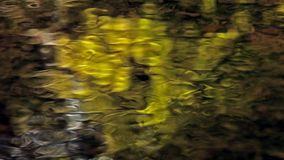 Golden water reflections. On the surface of a creek stock footage
