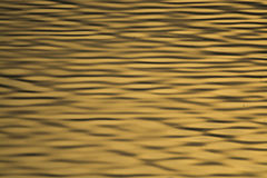 Golden water ripples Royalty Free Stock Photo