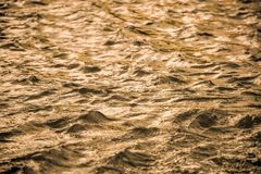 Golden water surface with soft waves abstract background Royalty Free Stock Image