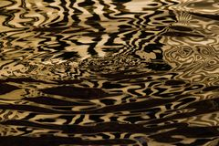 Waves on the water forming stripes similar to the texture of velvet, the alternation of gold and black stripes and waves. Golden water Waves on the water forming royalty free stock photography