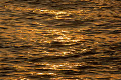 Golden water waves Stock Image