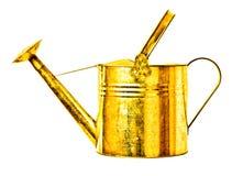 Golden watering can Stock Photos