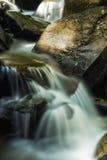 Golden Waters Stock Photos