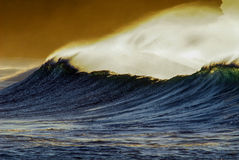 Golden wave spray Stock Images