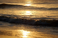 Golden waves. Waves turned golden by the rising sun Stock Photography