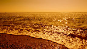 Golden waves Stock Images