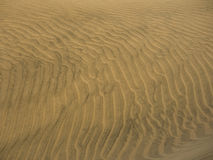 Golden wavy sand texture Stock Photography