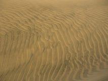 Golden wavy sand texture. Over desert dunes Royalty Free Stock Photos