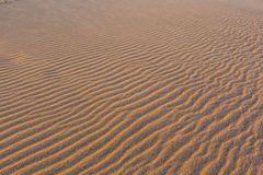 Golden wavy sand texture pattern structure, lit by morning sun Stock Photography